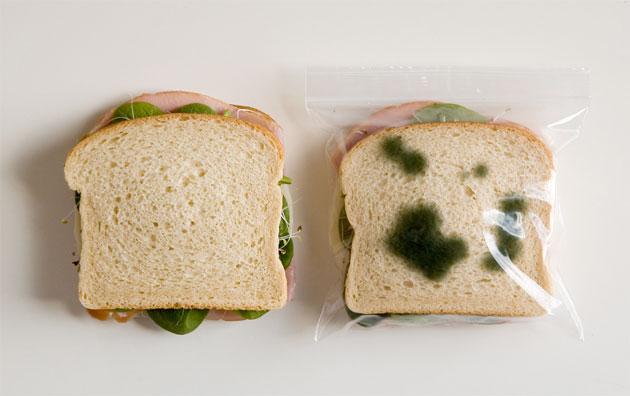saquinhos-de-sanduiche12